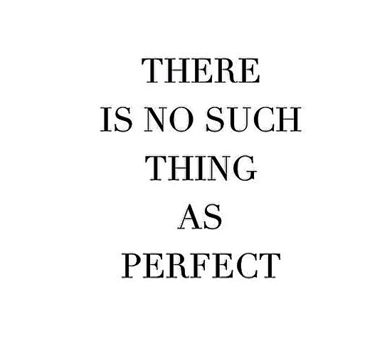 there is no such thing as perfect quote